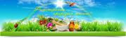 Рецепты здоровья от Натальи Земной-Зубицкой известной травницы,  целите